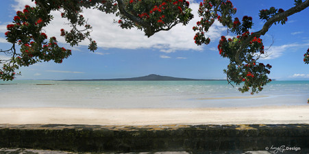 Kohi Paradise', Rangitoto and Pohutukawa landscape photograph from Kohimarama, Auckland, NZ -print for sale.