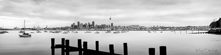 Auckland, New Zealand cityscape showing the skyline and Skytower - landscape photo print for sale.