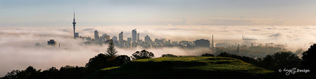 Auckland, NZ misty morning cityscape with skyline /  Skytower - photo print for sale.