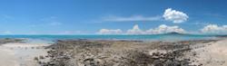 Milford Beach (to 1.4m)