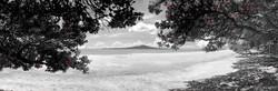 Takapuna in Summer (bw, panoramic to 1.8m)