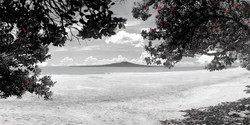 Takapuna in Summer (bw, rectangular to 1.4m)