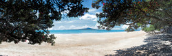 Takapuna Beach, Rangitoto and Pohutukawa beach scene, Auckland, NZ - landscape photo print for sale.