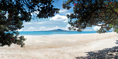 Takapuna iBeach, Rangitoto and Pohutukawa beach scene, Auckland, NZ - landscape photo print for sale.