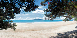 Takapuna in Summer', Rangitoto and Pohutukawa beach scene, Auckland, NZ - landscape photo print for sale.