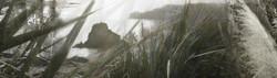Memories of Piha (panoramic to 1.8m)
