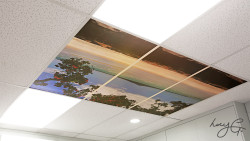 Printed ceiling tile artwork (3 ceiling panels)