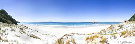 Mangawhai Heads, Northland, NZ showing sanddunes and sea - landscape photo print for sale.