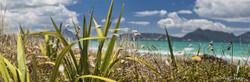 Ruakaka Beach 3 (to 1.4m)