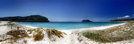 Whangamata, Coromandel, NZ, showing sand dunes and beach - landscape photo print for sale.