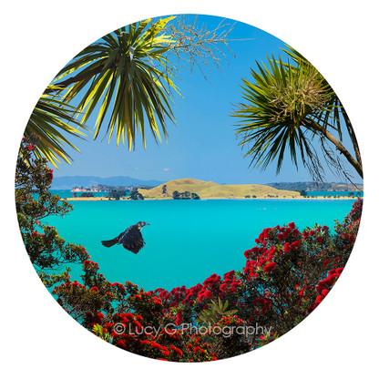 Brown's Island and Pohutukawa circular beach scene,  Auckland - landscape photo print for sale.