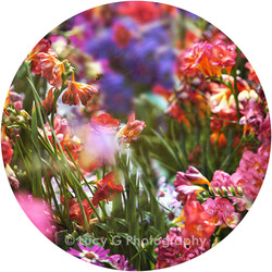 Round wall decal - 'Spring Blooms 4'