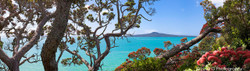 Shang-ri-la (Rangitoto, colour, whole image)