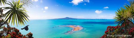 Achilles Point Lookout (Rangitoto, whole image)