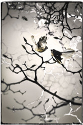 'Fantail Family'  - NZ Fantail silver foil art print for sale, A3, by Lucy G