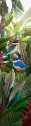 NZ Kingfisher art print (whole image)