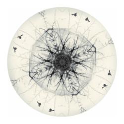 Tui Mandela - circular NZ art print