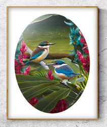 ''Harmony'' tropical NZ Kingfisher in lush river setting.  A3 oval photo prints for sale .