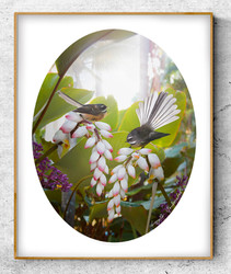 ''Soulmates'' two NZ Fantails in a lush tropical garden.  A3 oval photo prints for sale .