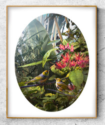 NZ Waxeye / Silvereye birds in lush garden setting - oval photo art print / wall art for sale