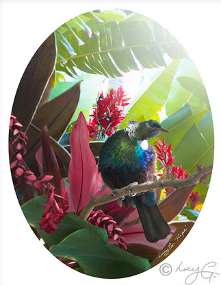 NZ TUI TROPICAL OVAL PHOTO PRINT  / CANVAS WALL ART FOR SALE