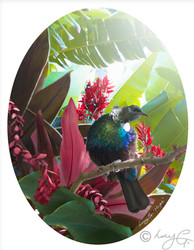 """HOPE' TROPICAL NZ TUI PHOTO WALL ART PRINT"