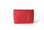 SIWA CUSHIONED CASE (RED)