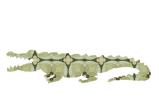 WALLPAPER WILDLIFE CROCODILE by Inke Heiland wm-crocodile-0076