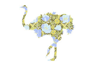 WALLPAPER WILDLIFE OSTRICH by Inke Heiland wm-ostrich-0149