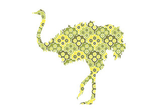 WALLPAPER WILDLIFE OSTRICH by Inke Heiland wm-ostrich-0185