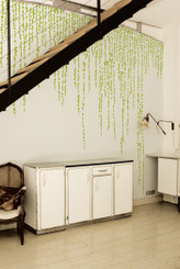 DOMESTIC WALL STICKER- JUNGLE PEAS design by Ich& Kar