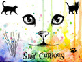 Visible Image Stamps – Curious Cats 160x115mm