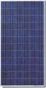 Canadian Solar 300W Poly Module