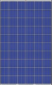 Trina Solar PA05 255W Module