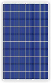 Trina Solar PD05 250W Module