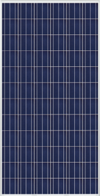 Trina Solar PD14 300W Module