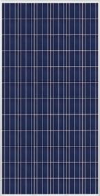 Trina Solar PD14 305W Module