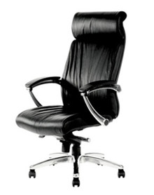 Centurion Executive Leather Chair