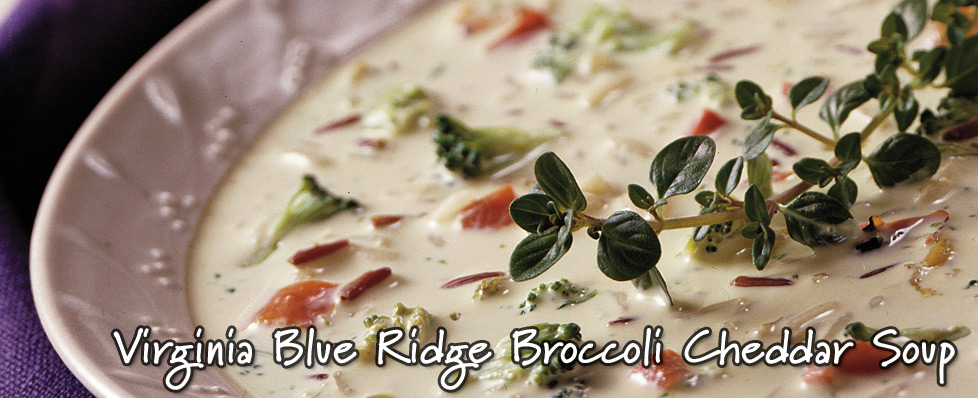 Virginia Blue Ridge Broccoli Cheddar Soup