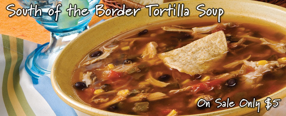 South of the Border Tortilla Soup