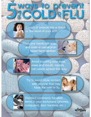 Cold or Flu Safety Poster (24 by 32 inch)