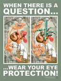 Eye Protection Safety Poster - 18X24