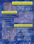 Sexual Harassment Informational Poster - 24X32