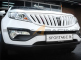 2011-2014 Sportage Painted Grill - Type MC
