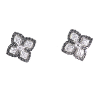18kt White Gold Diamond & Black Diamond Earrings