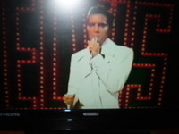 Britains Favorite Elvis Song DVD,Top 20 single hits.