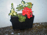 ,Architectural Salvage,Victorian Cast Iron Rainwater Hopper,Makes a Great Wall Planter
