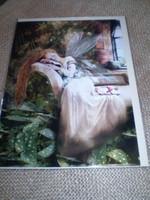 English Fairy Card,,Lilly Sleeping