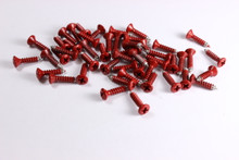 Corrosion Resistant Red Powdercoated Pickguard Screws--->  Free Shipping!