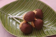 Smores Chocolate Covered Marshmallow Pops - One Dozen